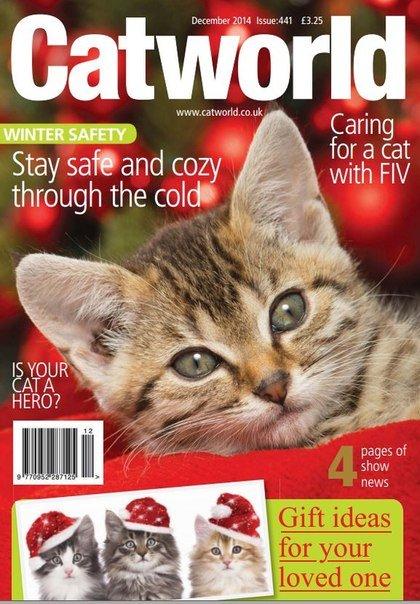 Download Catworld - December 2014 UK