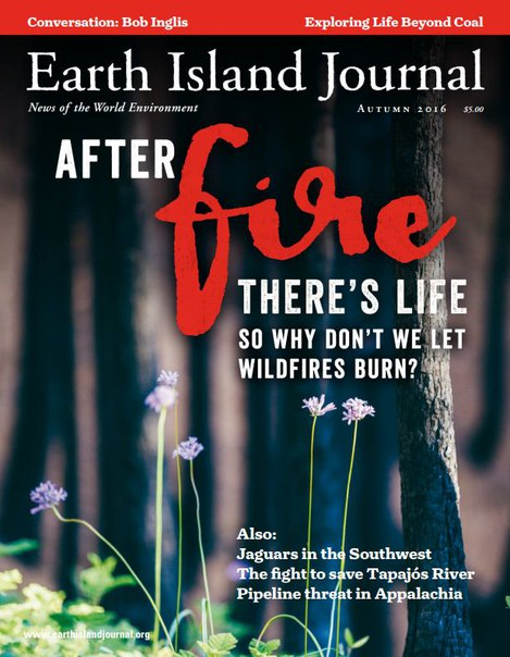 Download Earth Island Journal - Autumn 2016