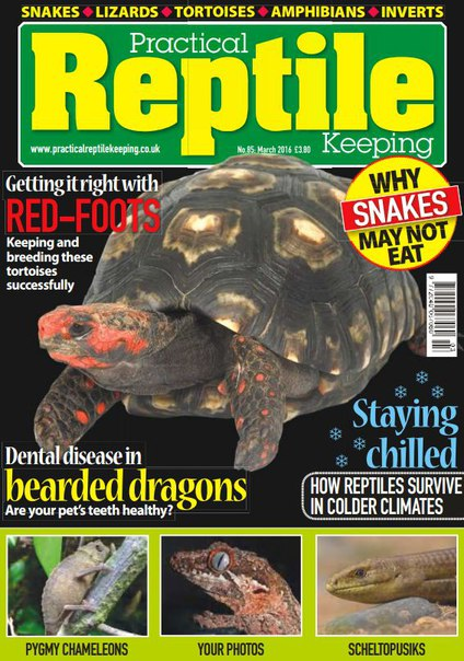 Download Practical Reptile Keeping - March 2016