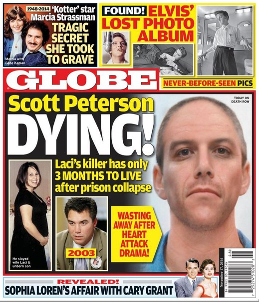 Download Globe - November 17, 2014