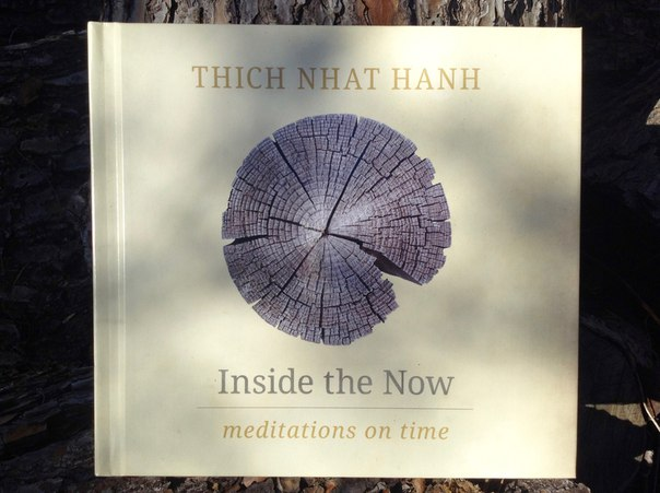 Download Inside the Now Meditations on Time