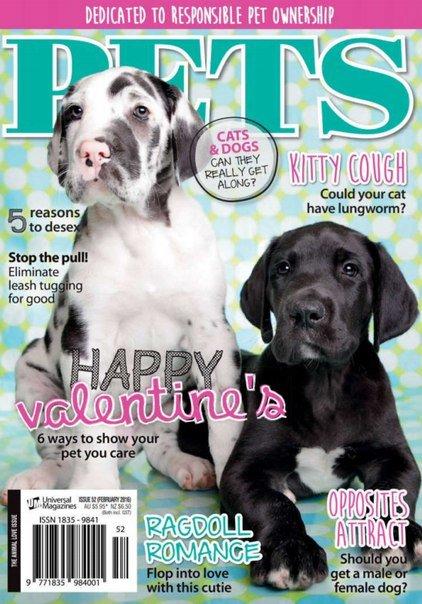 Pets – February 2016