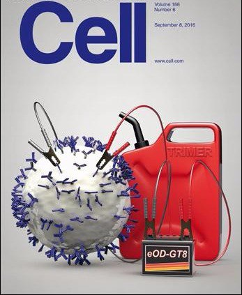 Download Cell - 8 September 2016