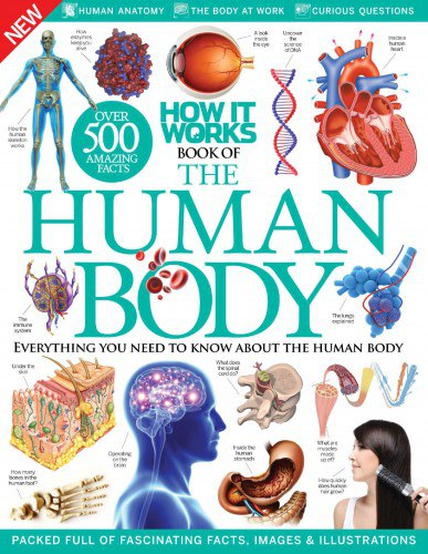 Download How It Works - Book Of The Human Body 7th Edition