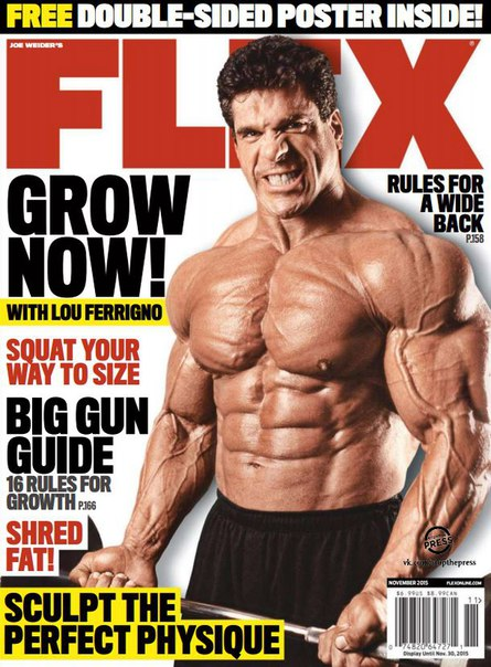 Download Flex - November 2015