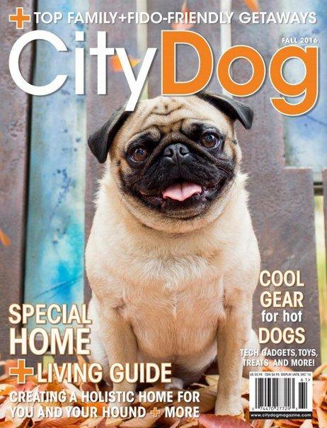 Citydog fall2016