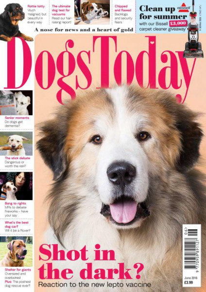 Download Dogs Today June 2016