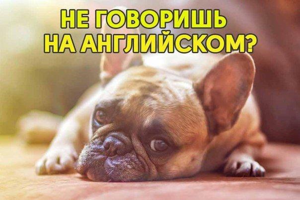 Download 5 июля в 20:00 по московскому времени