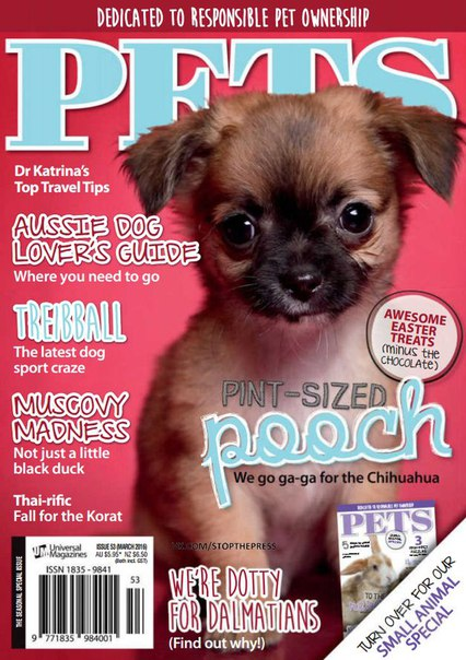 Pets – March 2016