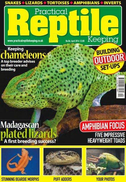 Download Practical Reptile Keeping - April 2016