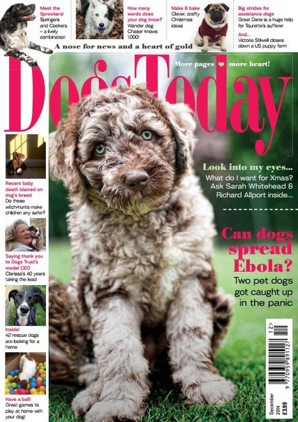 Dogs Today – December 2014 UK
