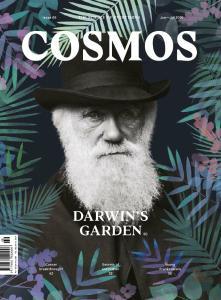Cosmos – June-July 2016