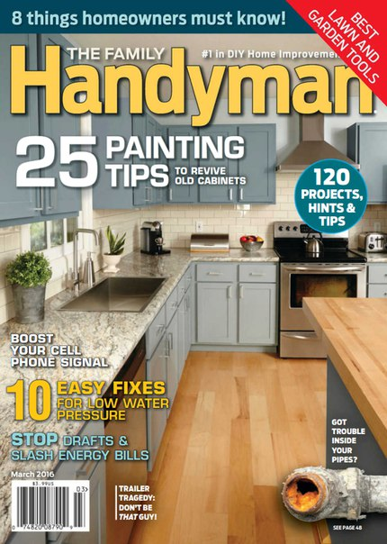 Download The Family Handyman - March 2016