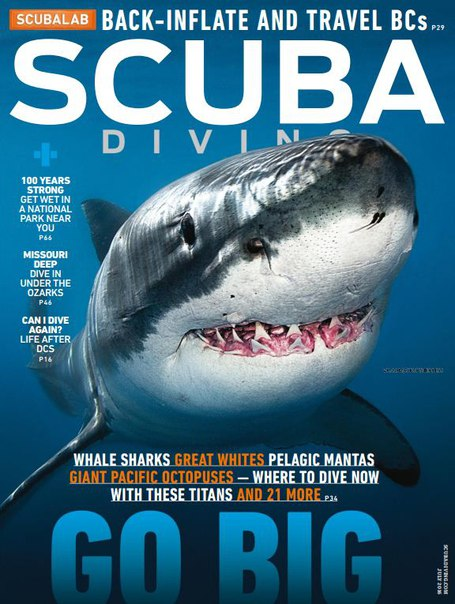 Download Scuba Diving - July 2016