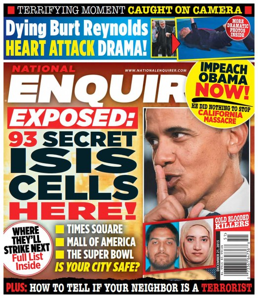 Download National Enquirer - December 21, 2015