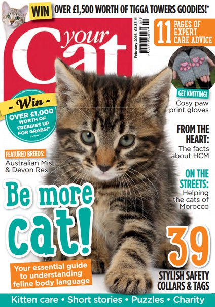 Download Your Cat - February 2016