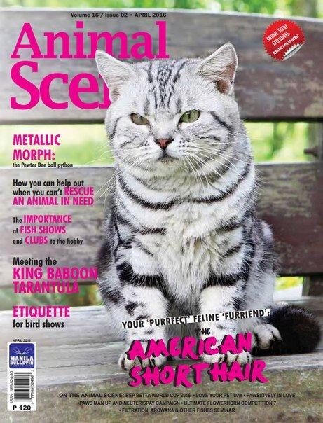 Download Animal Scene - April 2016