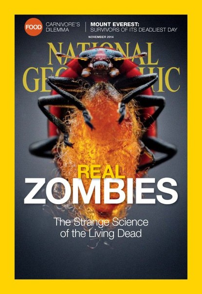 Download NationalGeographic201411