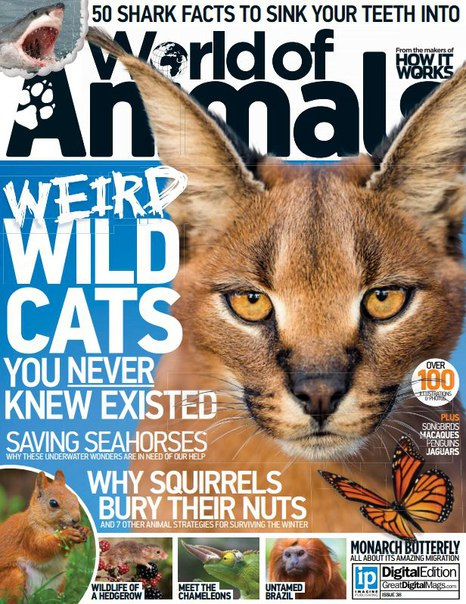 Download World Of Animals – Issue 38 2016