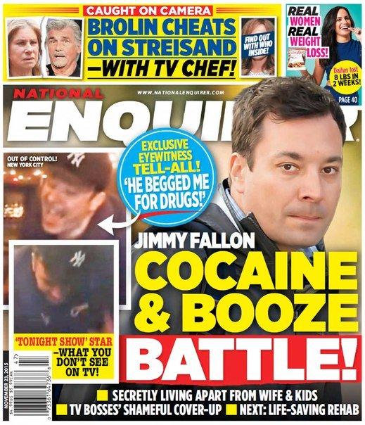 Download National Enquirer - November 23, 2015