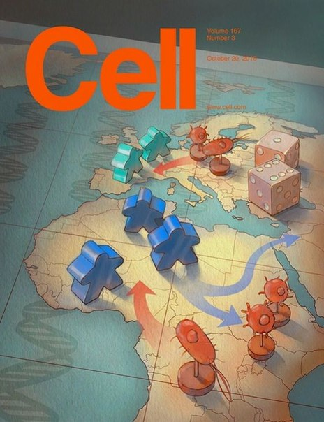 Download Cell – 20 October 2016