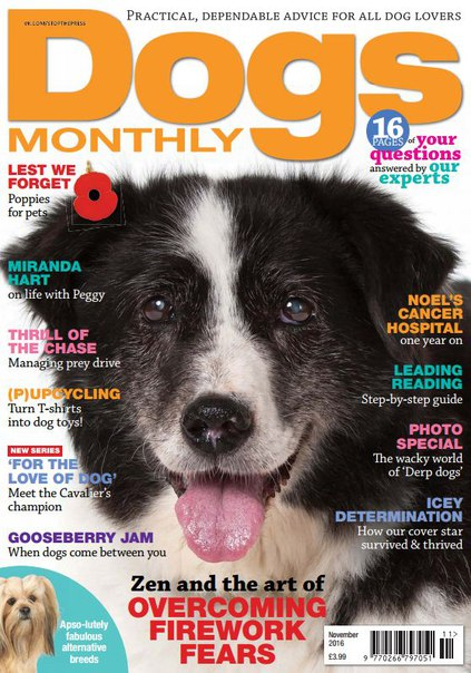 Download Dogs Monthly – November 2016
