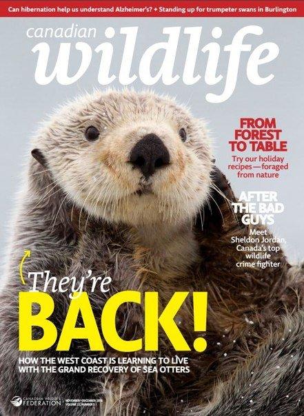 Download Canadian Wildlife - NovemberDecember 2016