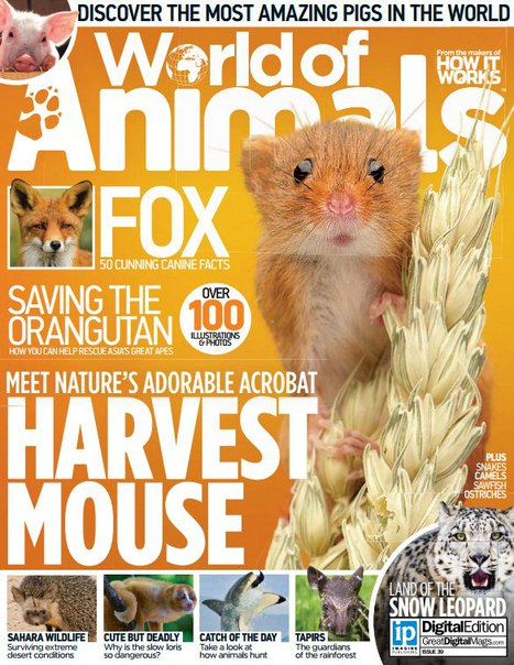 Download World of Animals - Issue 39 2016
