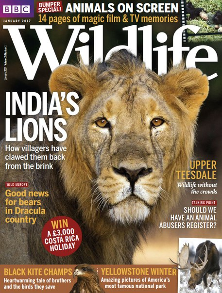 Download BBC Wildlife – January 2017