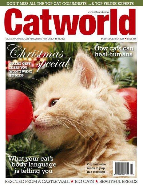Download Cat World - December 2016