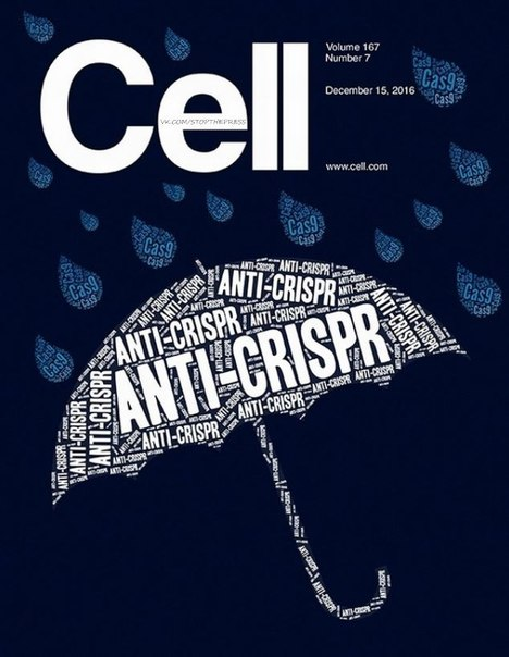 Download Cell - 15 December 2016