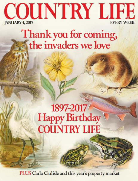 Download Country Life UK - January 4, 2017
