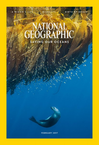 Download National Geographic USA - February 2017-P2P