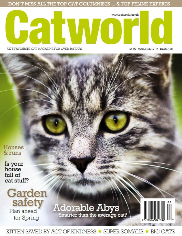 Download Cat World Issue 468 March 2017