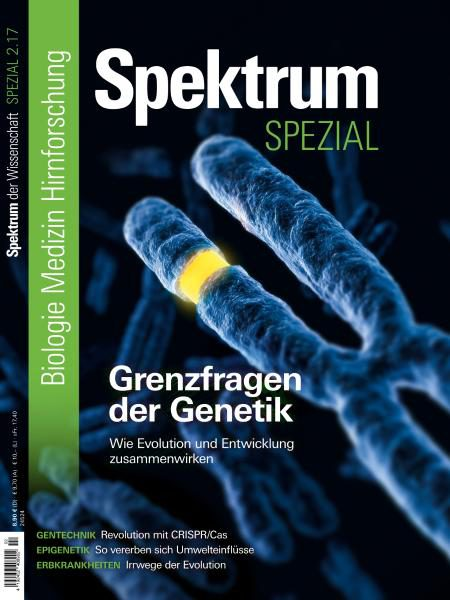 Download Spektrum der Wissenschaft Spezial Biologie — Medizin — Hirnforschung Nr.2 2017