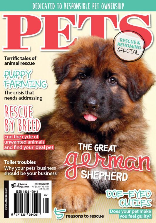 Download Pets - May 2017