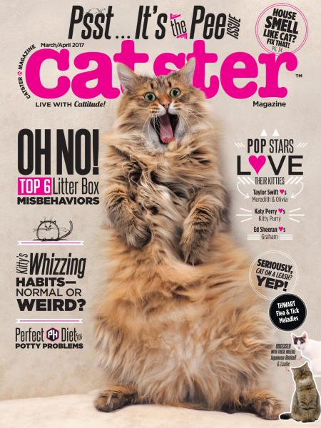 Download Catster - March April 2017