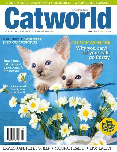 Download Cat World — June 2017