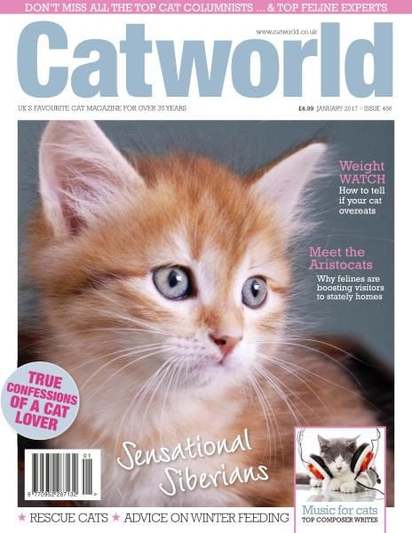 Download Cat World — Issue 466 — January 2017