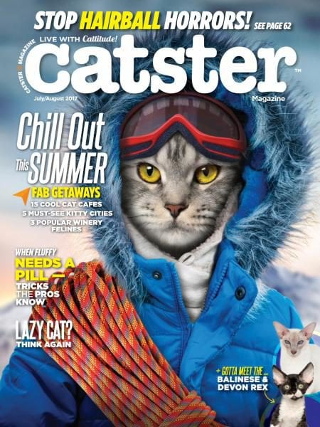 Download Catster – July-August 2017