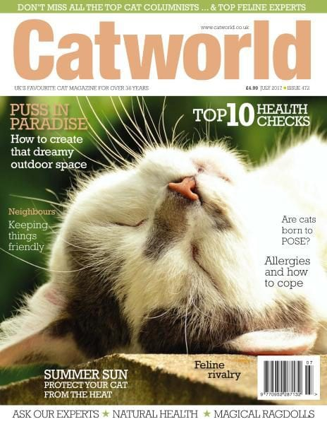 Download Cat World — Issue 472 — July 2017