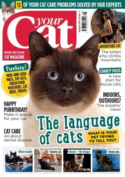 Download Your Cat — August 2017