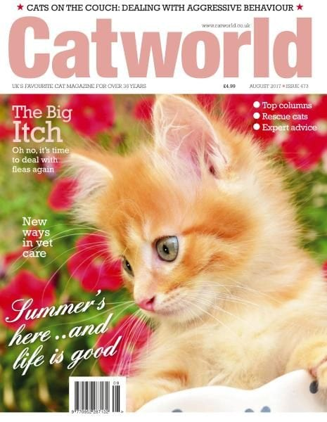Download Cat World — Issue 473 — August 2017
