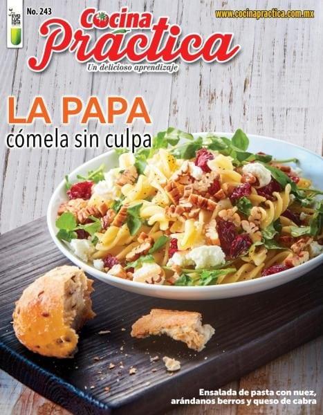 Cocina pr ctica numero 243 2017 pdf download free for Cocina practica