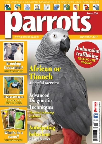 Download Parrots — Issue 236 — September 2017