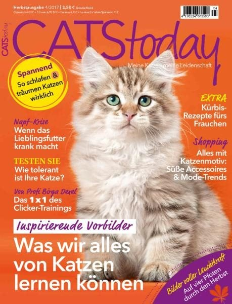 Download Cats Today — September 2017
