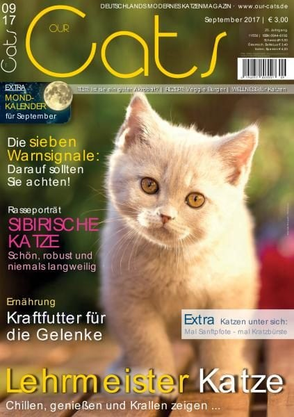 Download Our Cats — September 2017