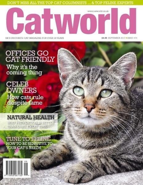 Download Cat World — September 2017