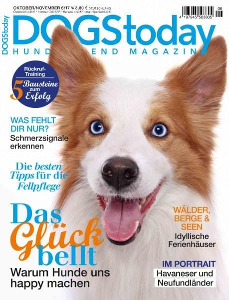 Download Dogs Today Germany — Oktober-November 2017