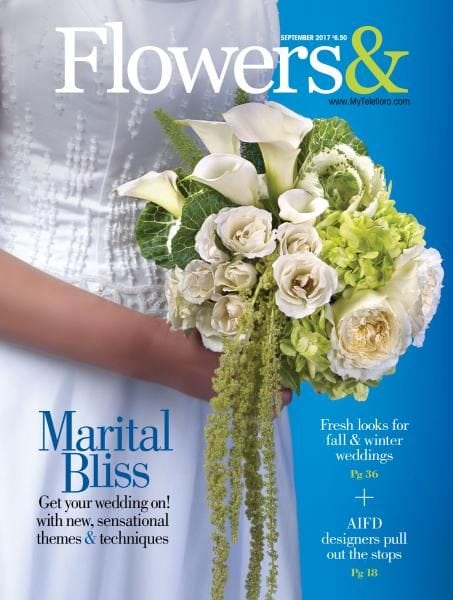 how to download free pdf magazines